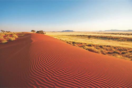 Safaris autotour en Namibie